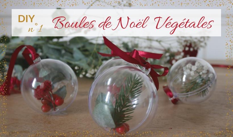 Diy Boule De Noel.Diy N 1 Boules De Noël Végétales Echoppe Française